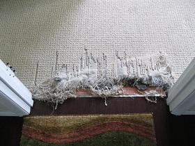 carpet repair before