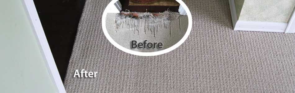 Professional Berber Carpet Repair