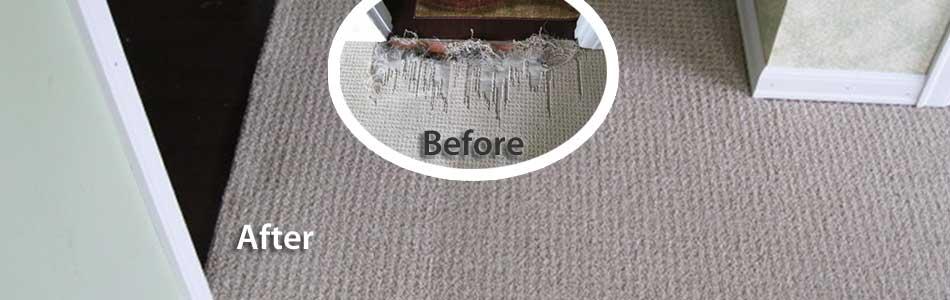 Professional Berber Carpet Repair