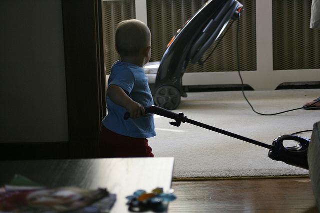 Vacuum Cleaner Carpet Cleaning
