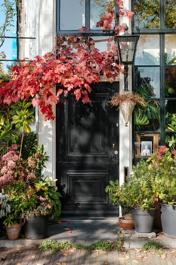 3 Decorating Ideas to Embrace this Fall