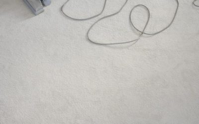 Watch Out for These Signs of Carpet Mold