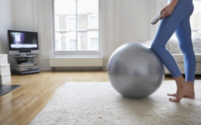 Frieze Carpet 101