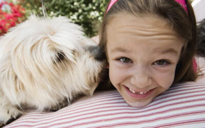 3 Important Carpet Cleaning Tips for Pet Owners